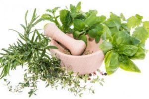 plantas medicinales para la parestesia